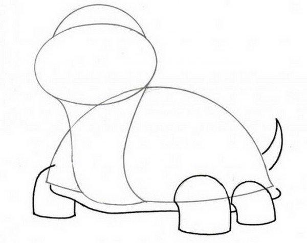 Нарисовать черепаху поэтапно - 1
