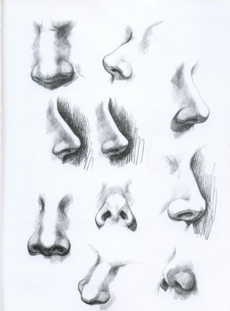 Как рисовать нос