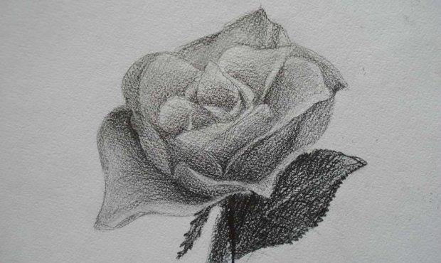 Как нарисовать цветок символами