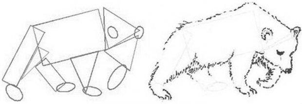 Как нарисовать животных карандашом