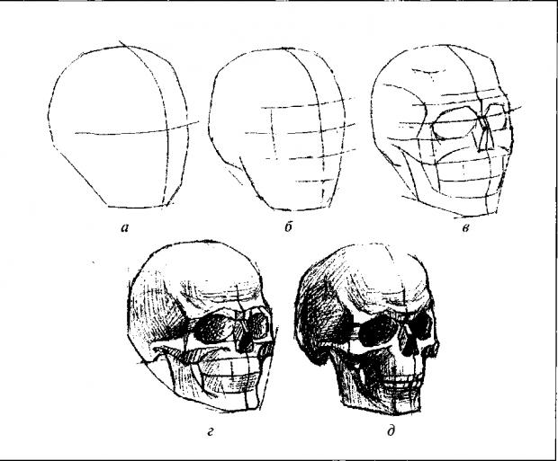 Как рисовать череп
